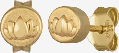 caï Ohrstecker in gold, Produktansicht