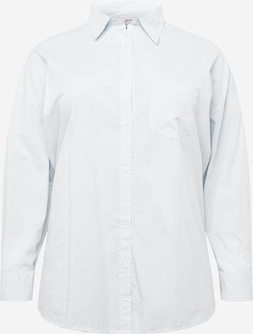 Cotton On Curve Blúzka - Modrá