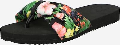 FLIP*FLOP Séparateur d'orteils 'Pooly' en mélange de couleurs / noir, Vue avec produit
