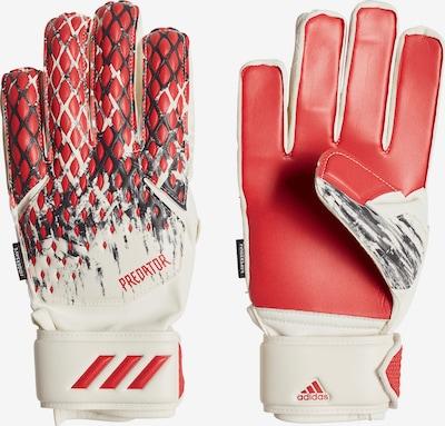 ADIDAS PERFORMANCE Handschuh in hellrot / schwarz / weiß: Frontalansicht