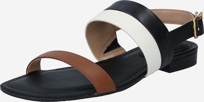 Lauren Ralph Lauren Сандали 'KRISTI' в кафяво / черно / бяло, Преглед на продукта