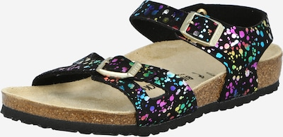 BIRKENSTOCK Sandal 'Rio' in Mixed colours / Black, Item view