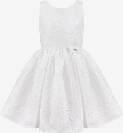 Gebriel Juno Kleid in silber, Produktansicht