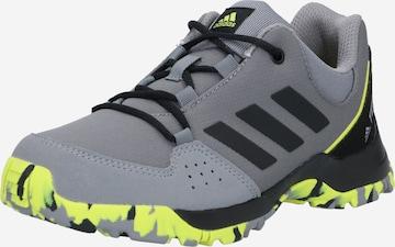Chaussures basses adidas Terrex en gris