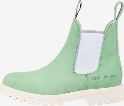 Blue Heeler Hamilton Chelsea Boots in hellgrün, Produktansicht
