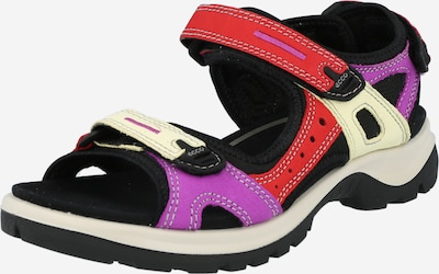 ECCO Trekking sandal 'Offroad' in Mixed colours, Item view