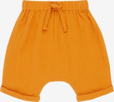 Sense Organics Pantalon 'CHARLIE' en orange, Vue avec produit