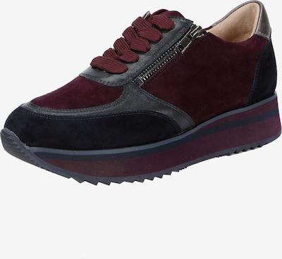 Ekonika Sneaker in dunkelblau / bordeaux, Produktansicht