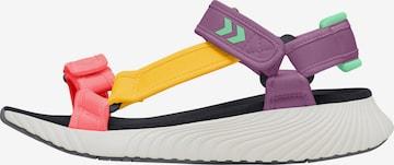 Sandales de randonnée Hummel en mélange de couleurs