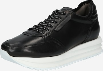 Kennel & Schmenger Sneaker 'JAZZ' in Schwarz