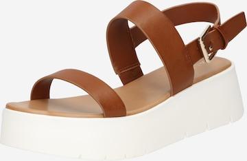 ALDO Sandale 'WIWIEL' in Braun