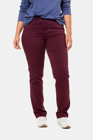Ulla Popken Jeans in Rood