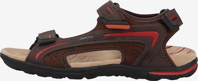 GEOX Sandalen in de kleur Bruin / Rood, Productweergave