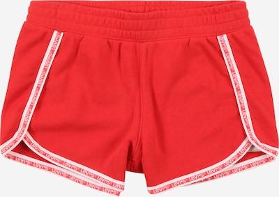 LEVI'S Shorts in rot / weiß, Produktansicht