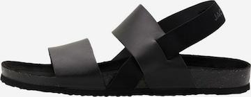 Sandales JACK & JONES en noir