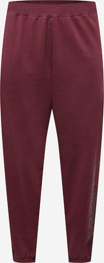 Public Desire Curve Панталон в боровинка / черно, Преглед на продукта