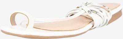 Raid Žabky 'ADAZE' - biela, Produkt