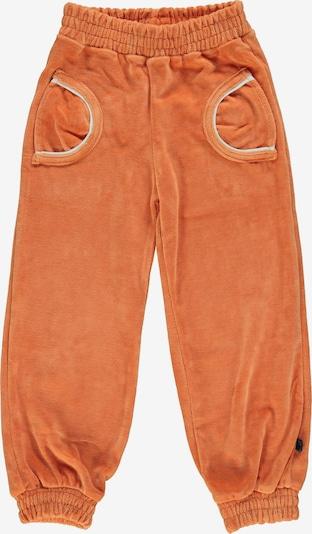 Småfolk Hose 'Velvet' in orange / weiß, Produktansicht