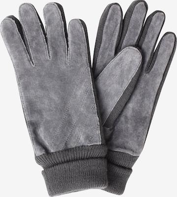SAMAYA Full Finger Gloves 'VELOUR-THINSULATE' in Grey
