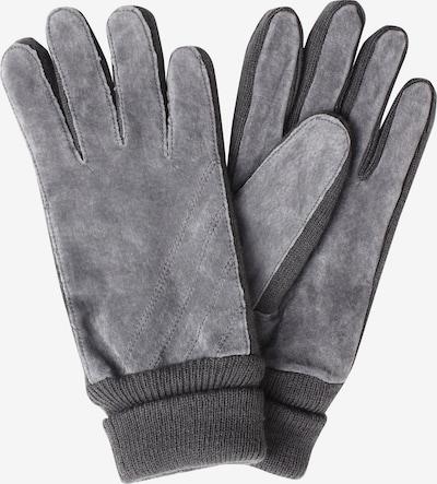 SAMAYA Full Finger Gloves 'VELOUR-THINSULATE' in Grey, Item view