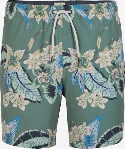 O'NEILL Boardshorts in de kleur Groen / Gemengde kleuren, Productweergave