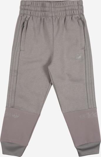 ADIDAS ORIGINALS Pantalon en gris, Vue avec produit