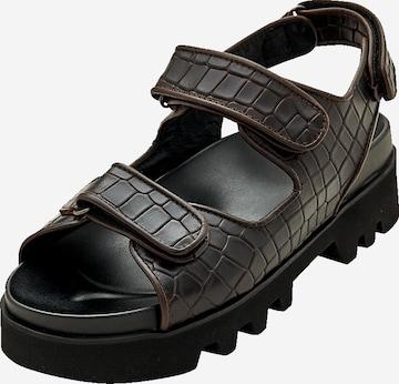 EDITED Sandals 'Taylah' in Brown