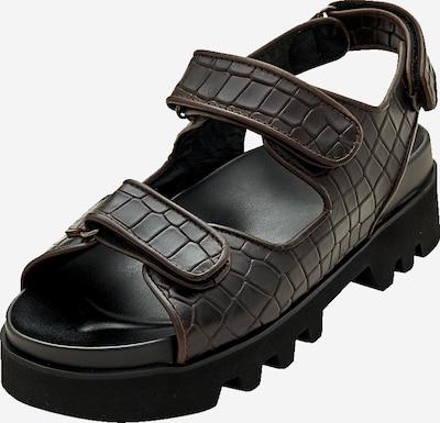 Sandale 'Taylah' EDITED pe maro, Vizualizare produs
