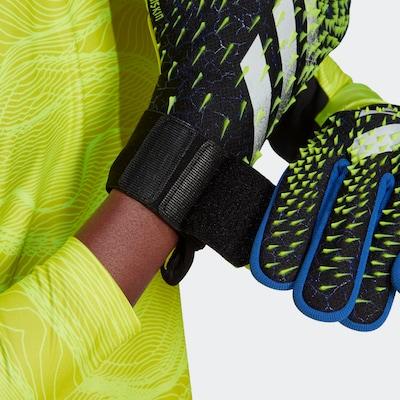 ADIDAS PERFORMANCE 'Predator' Torwarthandschuhe in blau / gelb / schwarz, Produktansicht