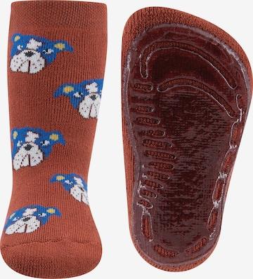 EWERS Socks in Brown
