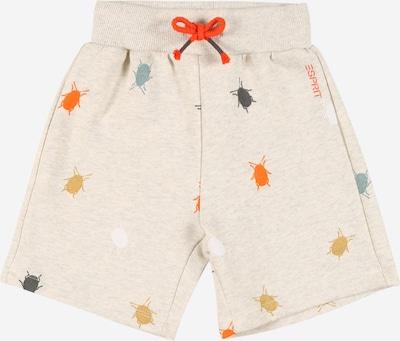 ESPRIT Shorts in beige / taubenblau / senf / neonorange / schwarz / silber, Produktansicht