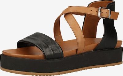 INUOVO Sandalen in braun / schwarz, Produktansicht