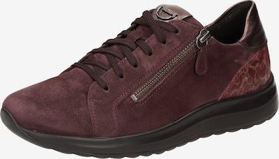 SIOUX Sneaker ' Maliske-701-H ' in dunkelrot, Produktansicht