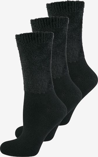 ELBEO Socks '3-Pack Cozy Winter' in Dark grey / Black, Item view