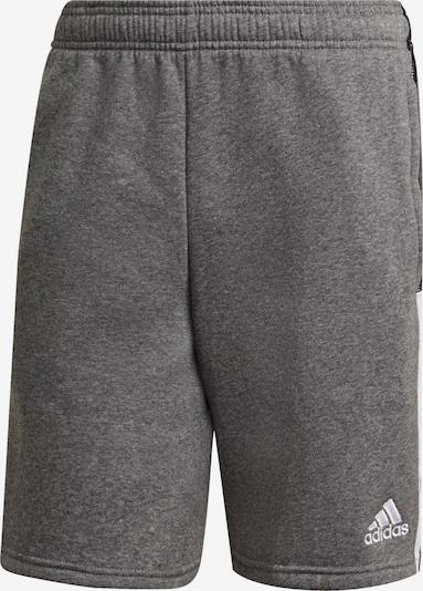 ADIDAS PERFORMANCE Shorts in grau / schwarz / weiß, Produktansicht