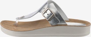 KICKERS Zehentrenner ' Odaliska ' in Silber