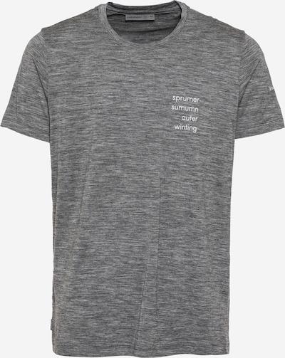 Sportiniai marškinėliai iš Icebreaker , spalva - margai pilka / balta, Prekių apžvalga