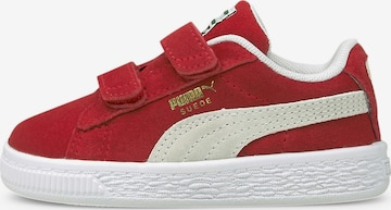 PUMA Sneaker in Rot