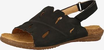 EL NATURALISTA Sandale in Schwarz