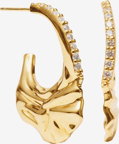 Sif Jakobs Ohrringe in goldgelb / transparent, Produktansicht