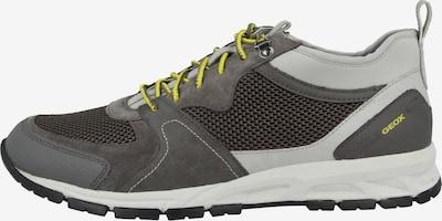 GEOX Sneaker in grau / grasgrün / weiß, Produktansicht
