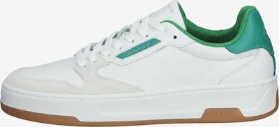 GANT Sneakers laag in de kleur Grasgroen / Wit, Productweergave