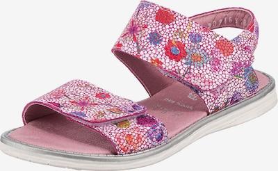 Däumling Sandale in mischfarben, Produktansicht