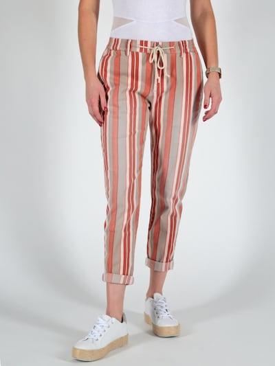 Miracle of Denim Hose in schlammfarben / orange / weiß, Modelansicht