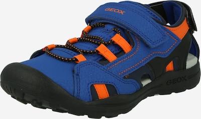 GEOX Schuhe 'VANIETT' in royalblau / orange / schwarz, Produktansicht