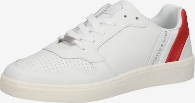 Sneaker low SCOTCH & SODA pe gri / roșu / alb, Vizualizare produs