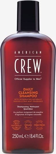 American Crew Haarshampoo 'Daily Cleansing' in, Produktansicht