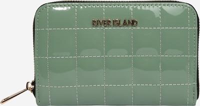 River Island Portmonetka w kolorze jasnozielonym, Podgląd produktu