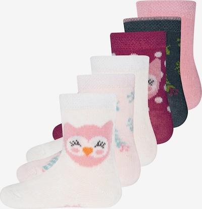 EWERS Čarape u roza / tamno crvena / bijela, Pregled proizvoda