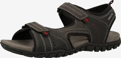 GEOX Sandale in schwarz, Produktansicht